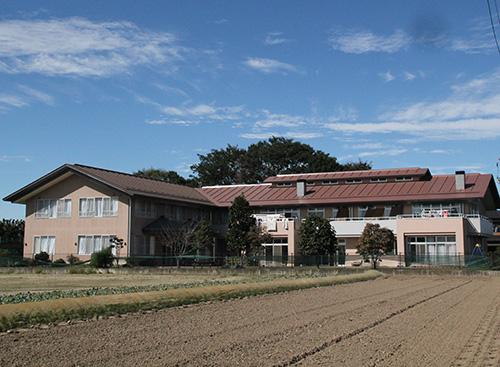 泰山木のある家